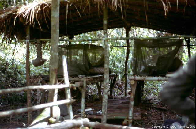 Jungle Survival School Instructors Shelter